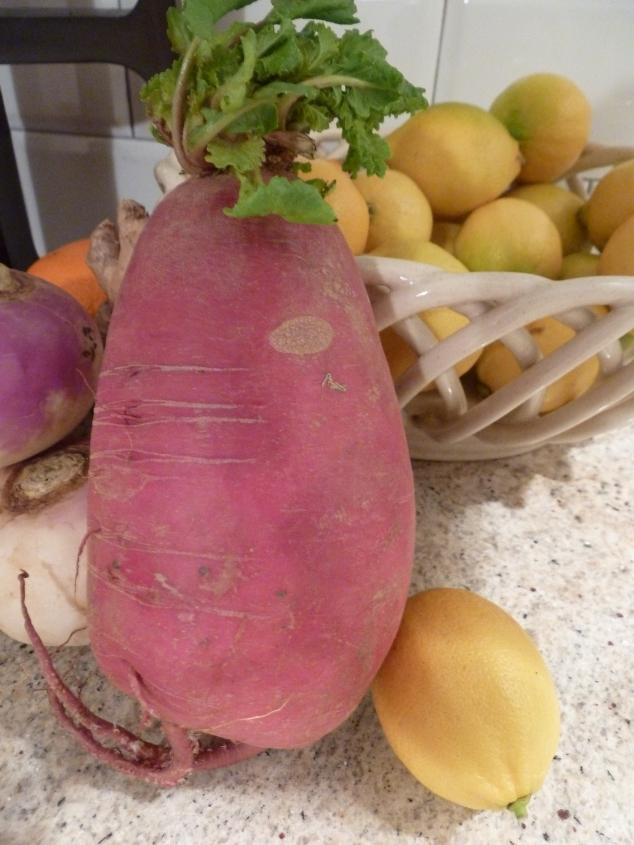"""watermelon"" radish"